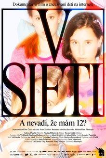 V sieti poster